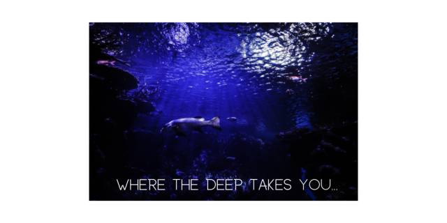 Where the deep takes you...